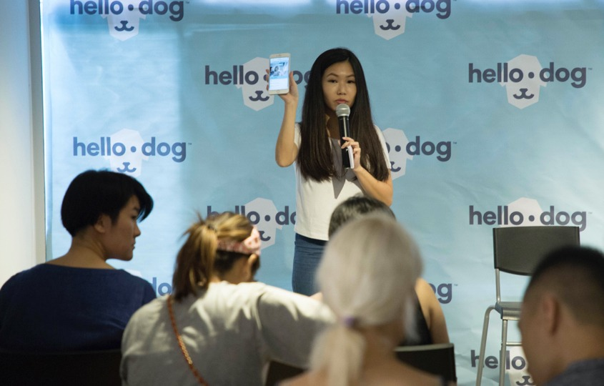 hellodog_launch_party_1