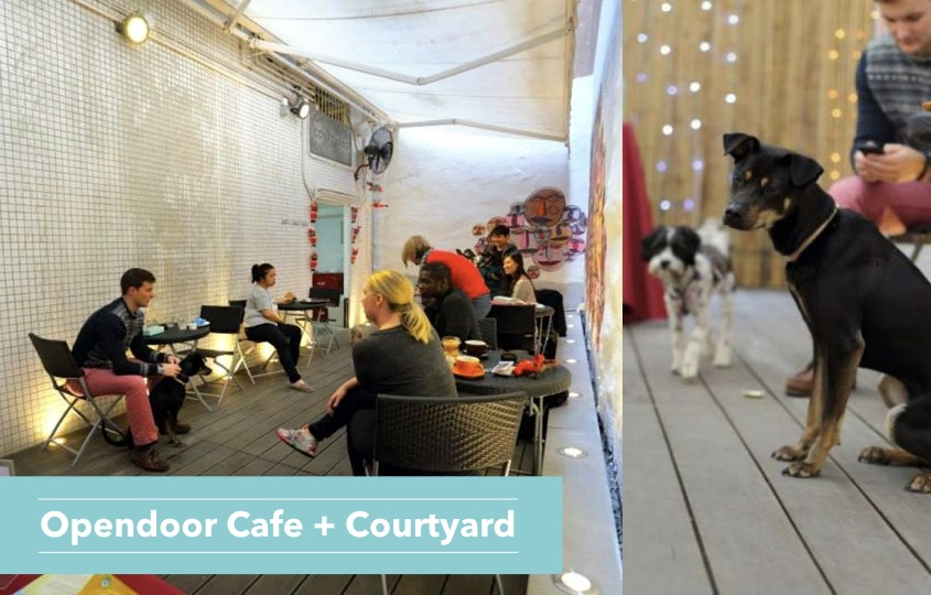dog friendly restaurants in Hong Kong