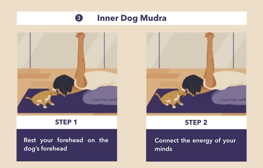 yoga with dogs