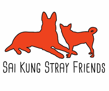 sai kung stray friends foundation