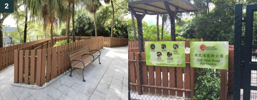 hong kong dog park