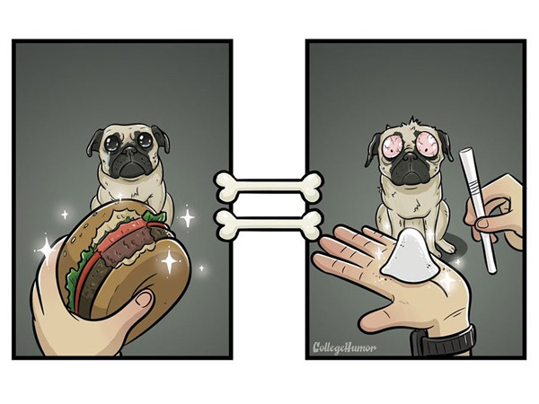 Funny dog illustration